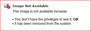 RISK LOGO-01-01 small2.png